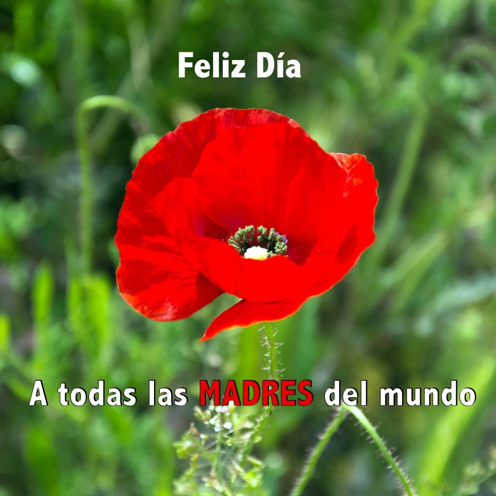 Cartel_Día_de_la_Madre
